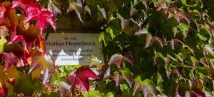 Praxis Dr Markus Heyenbrock 10-2014-28